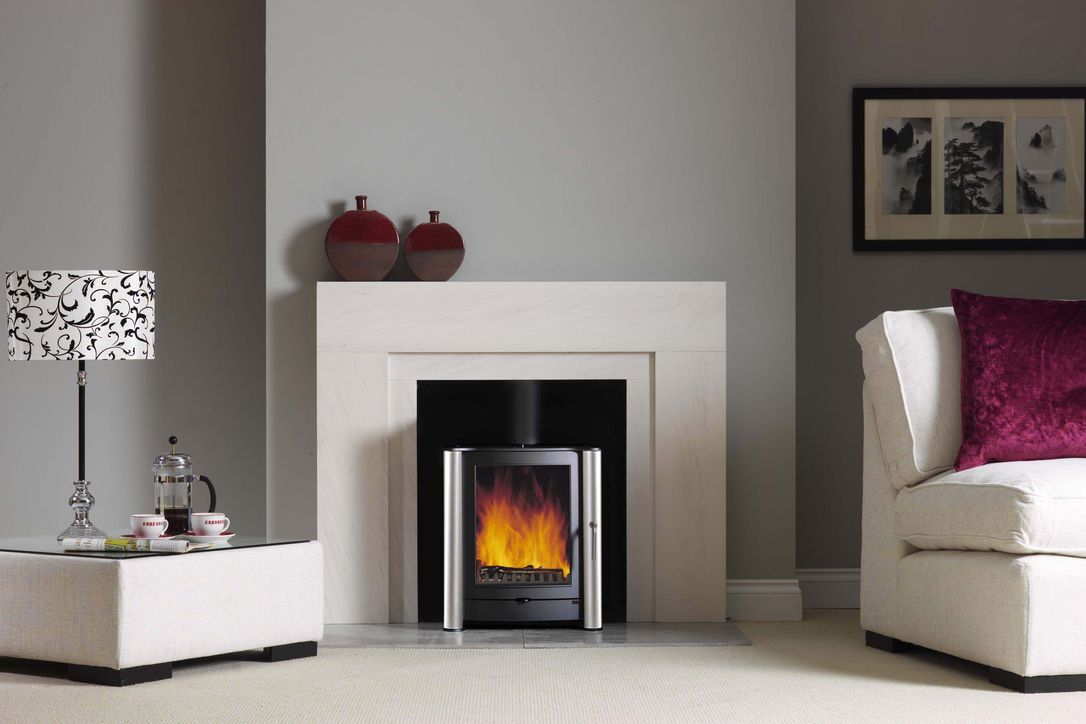 Firebelly Fb1 Wood Burning Stove With Brushed Stainless